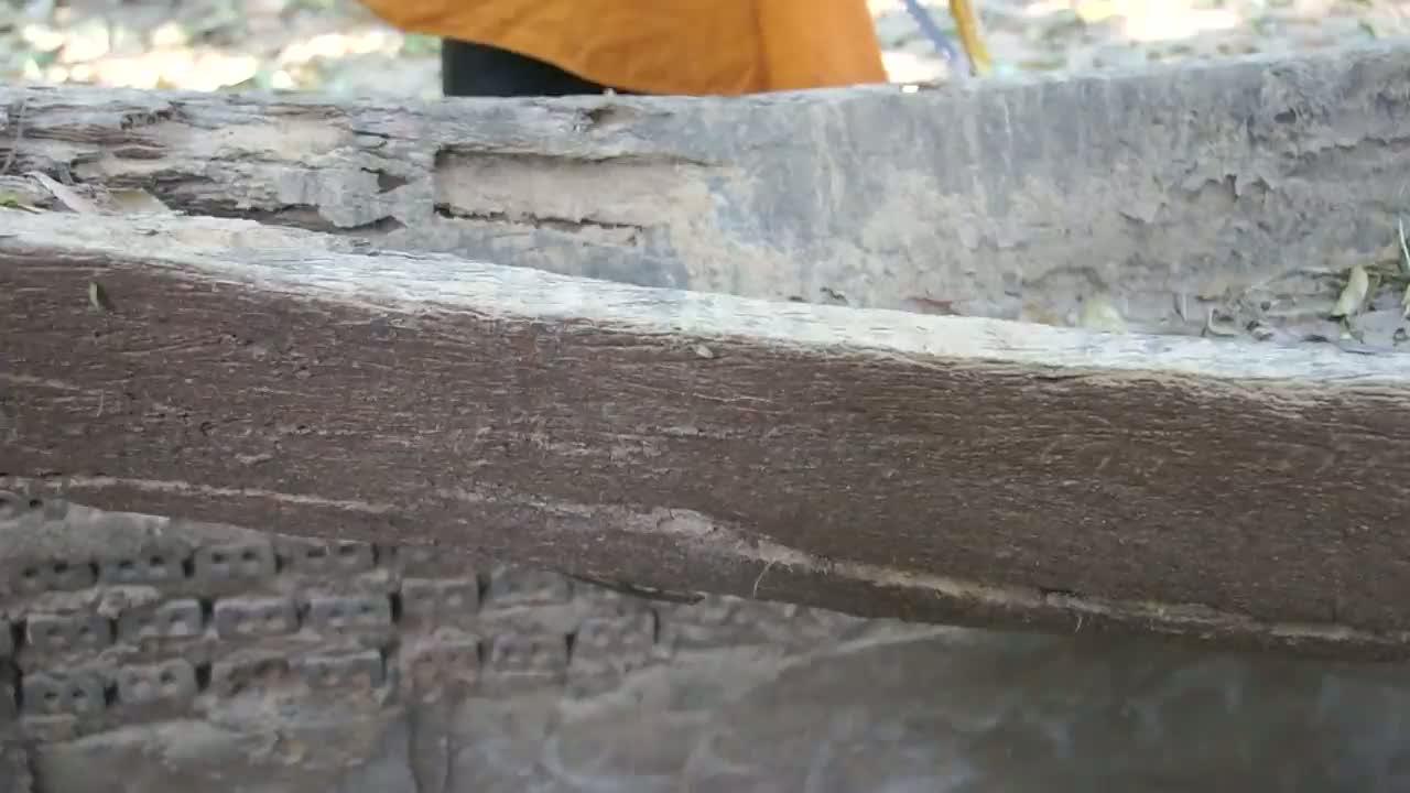 โคราช-พบเรือแข่งโบราณทำจากไม้ตะเคียนนับร้อยปีที่โคราช